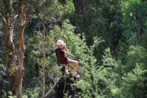 Flying Fox fun at QCCC